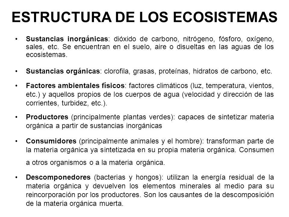 ESTRUCTURA DE LOS ECOSISTEMAS Sustancias inorgánicas: dióxido de carbono, nitrógeno, fósforo, oxígeno, sales, etc. Se encuentran en el suelo, aire o d