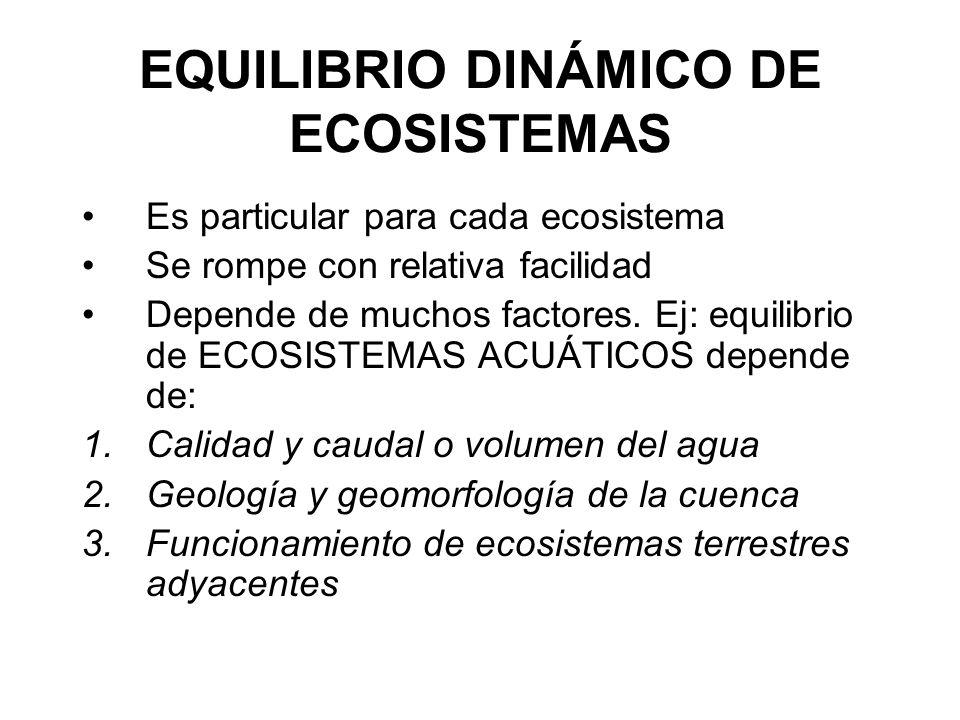 EQUILIBRIO DINÁMICO DE ECOSISTEMAS Es particular para cada ecosistema Se rompe con relativa facilidad Depende de muchos factores. Ej: equilibrio de EC