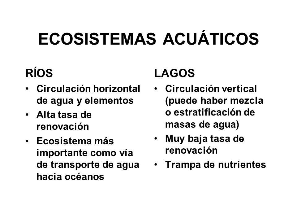 CONSIDERACIONES GESTIÓN DE ECOSISTEMAS ACUÁTICOS CONTINENTALES 1.Conocimiento del FUNCIONAMIENTO de los sistemas naturales 2.IMPACTO en los sistemas naturales de las diferentes acciones humanas 3.RECUPERACIÓN o restauración de los sistemas naturales 4.GESTIÓN del recurso agua 1- CIENCIA BÁSICA; 2,3 y 4- CIENCIA APLICADA