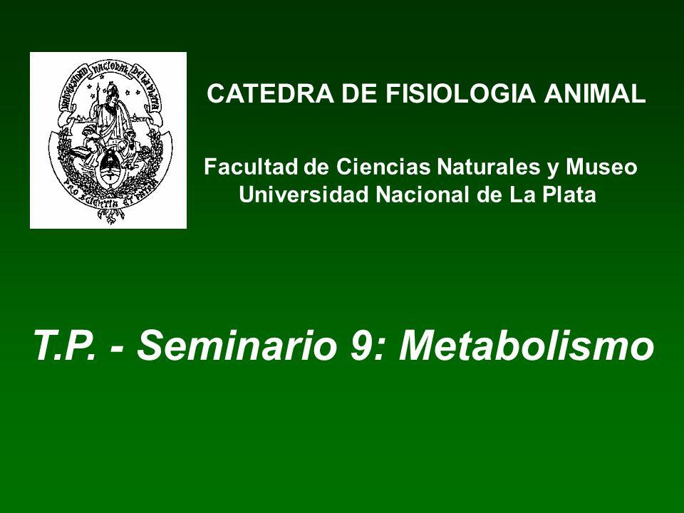 CATEDRA DE FISIOLOGIA ANIMAL Facultad de Ciencias Naturales y Museo Universidad Nacional de La Plata T.P. - Seminario 9: Metabolismo