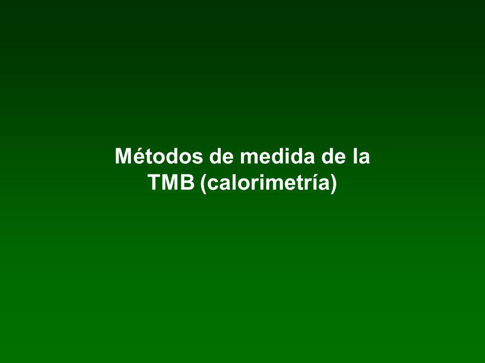 Métodos de medida de la TMB (calorimetría)