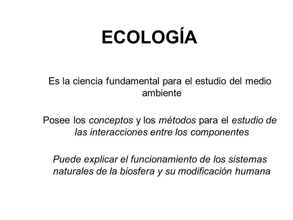 ECOLOGÍA Es la ciencia fundamental para el estudio del medio ambiente Posee los conceptos y los métodos para el estudio de las interacciones entre los