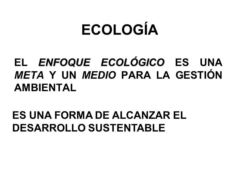 ECOLOGÍA ENFOQUE ECOLÓGICO EL ENFOQUE ECOLÓGICO ES UNA META Y UN MEDIO PARA LA GESTIÓN AMBIENTAL ES UNA FORMA DE ALCANZAR EL DESARROLLO SUSTENTABLE