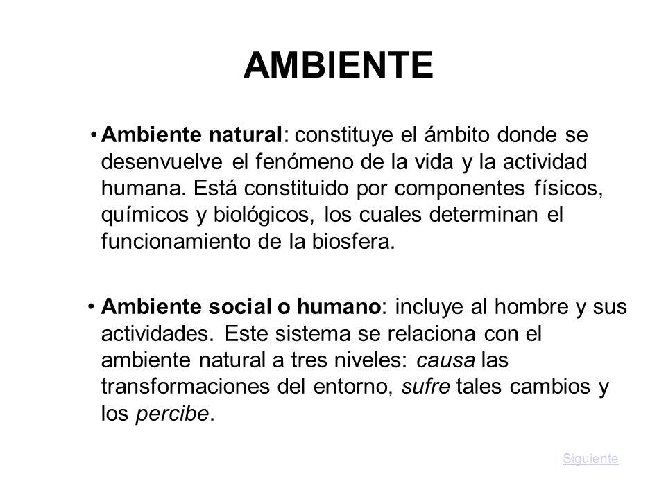 AMBIENTE Ambiente natural: constituye el ámbito donde se desenvuelve el fenómeno de la vida y la actividad humana. Está constituido por componentes fí