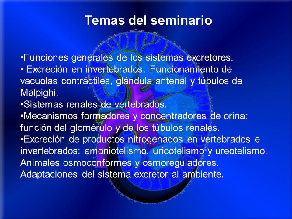 Funciones generales de los sistemas excretores.Excreción en invertebrados.