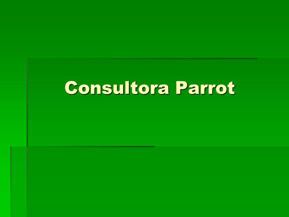 Consultora Parrot Trabajando para transformar su realidad …