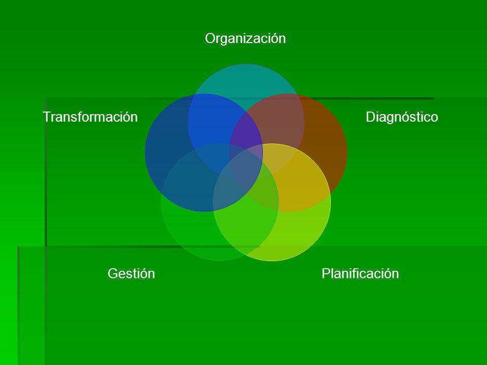 Organización Diagnóstico PlanificaciónGestión Transformación