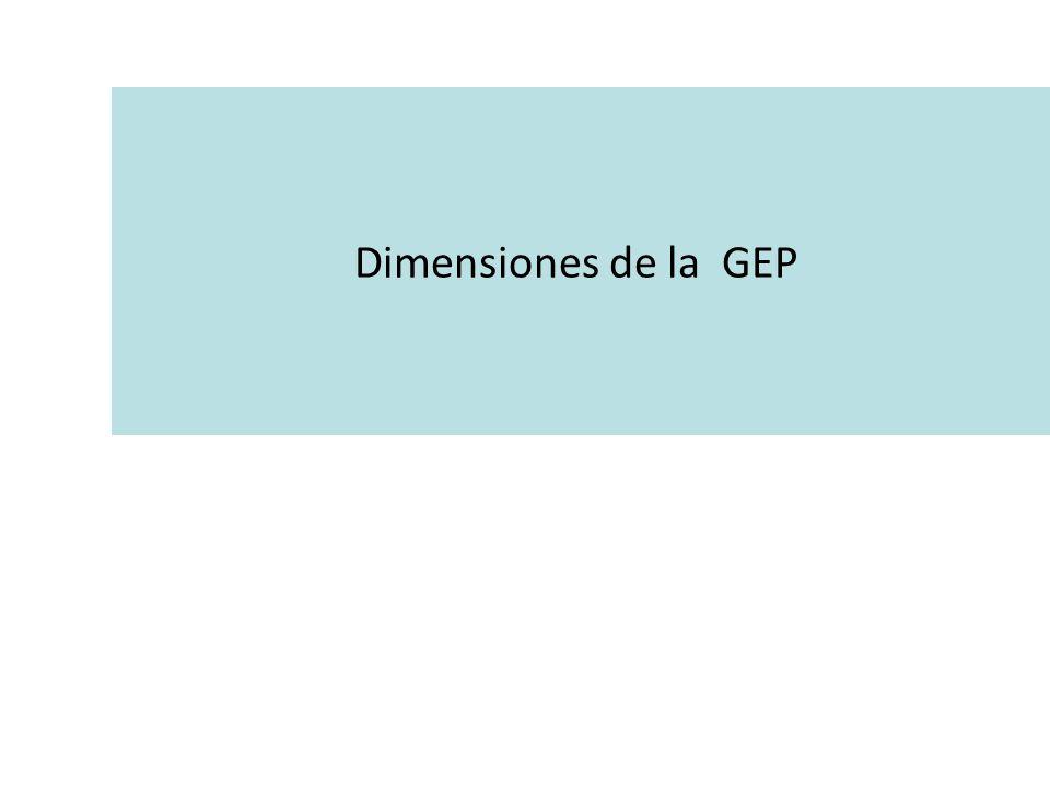 Dimensiones de la GEP