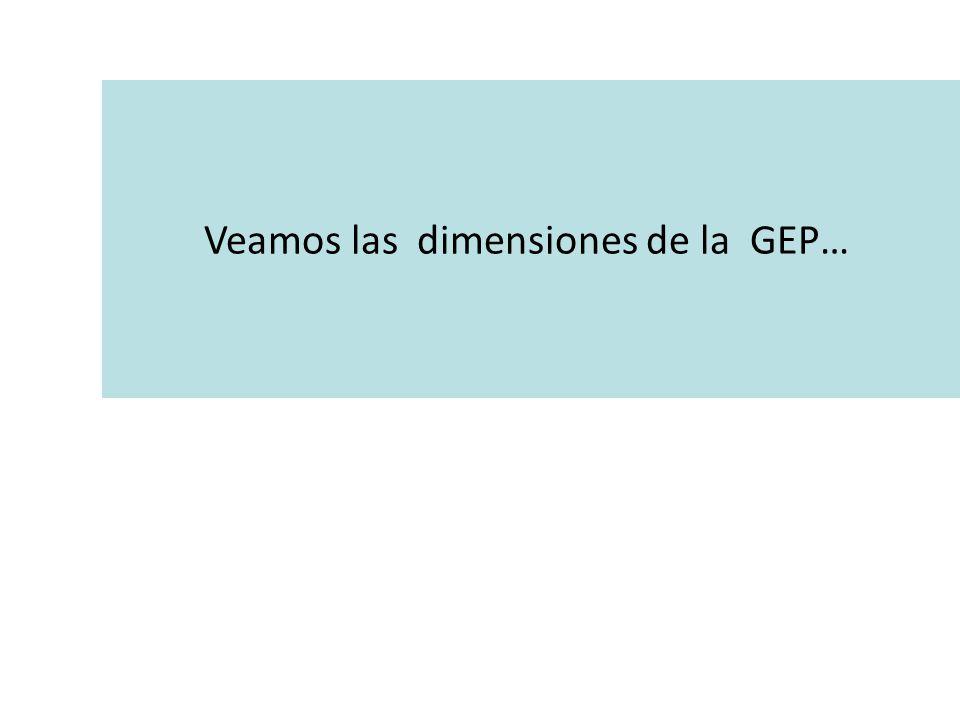 Veamos las dimensiones de la GEP…