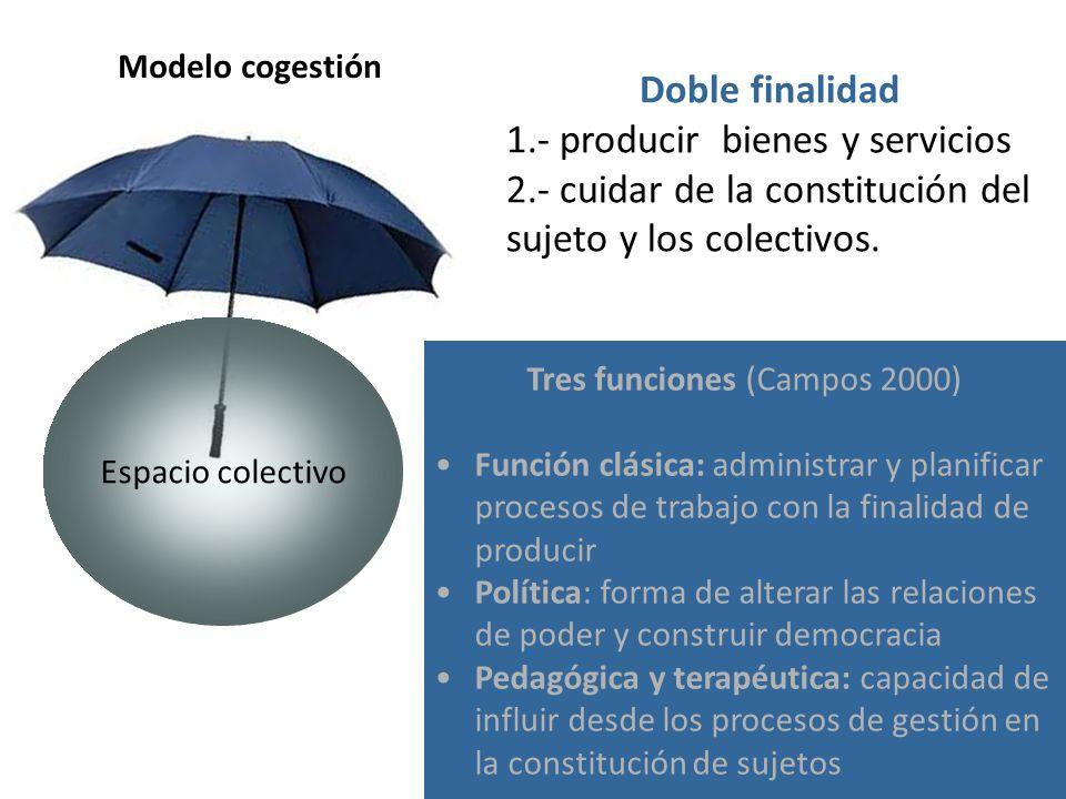 Doble finalidad 1.- producir bienes y servicios 2.- cuidar de la constitución del sujeto y los colectivos.