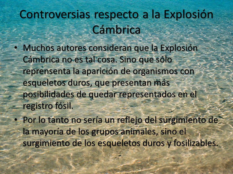 Controversias respecto a la Explosión Cámbrica Muchos autores consideran que la Explosión Cámbrica no es tal cosa.