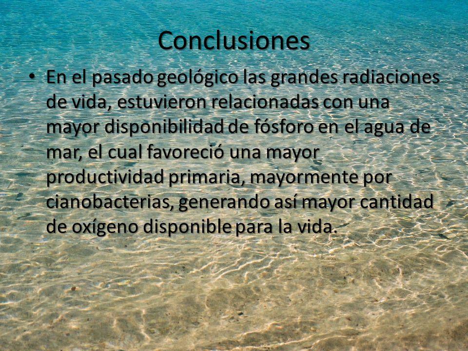 Conclusiones En el pasado geológico las grandes radiaciones de vida, estuvieron relacionadas con una mayor disponibilidad de fósforo en el agua de mar, el cual favoreció una mayor productividad primaria, mayormente por cianobacterias, generando así mayor cantidad de oxígeno disponible para la vida.