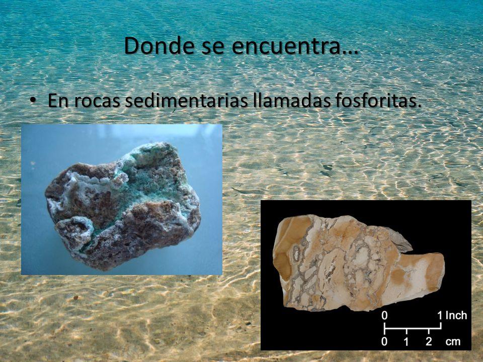 Donde se encuentra… En rocas sedimentarias llamadas fosforitas.