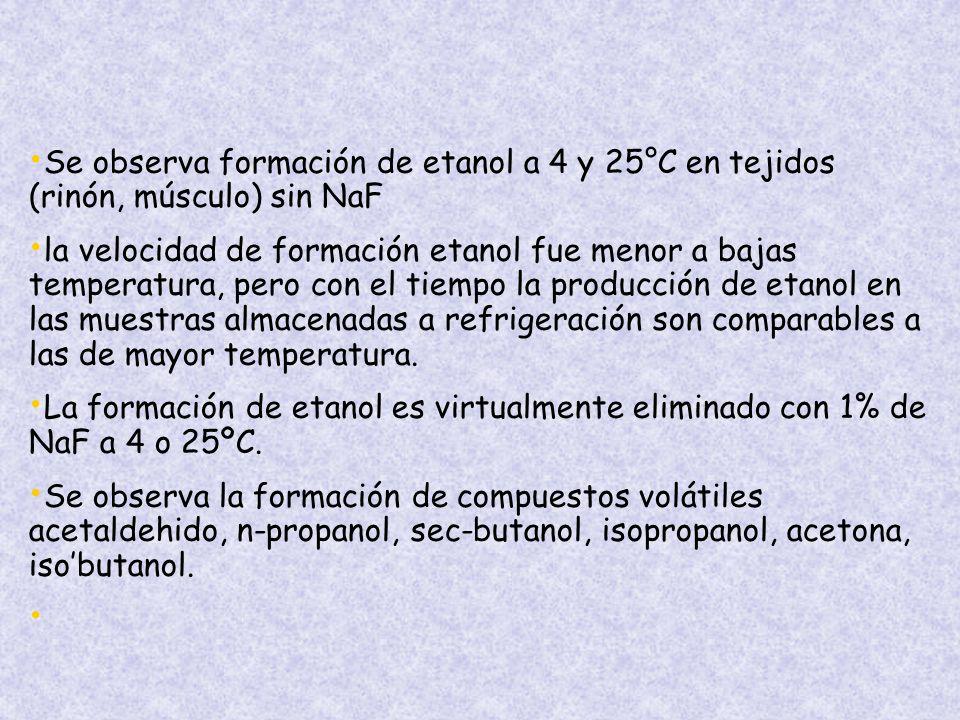 Se observa formación de etanol a 4 y 25°C en tejidos (rinón, músculo) sin NaF la velocidad de formación etanol fue menor a bajas temperatura, pero con el tiempo la producción de etanol en las muestras almacenadas a refrigeración son comparables a las de mayor temperatura.