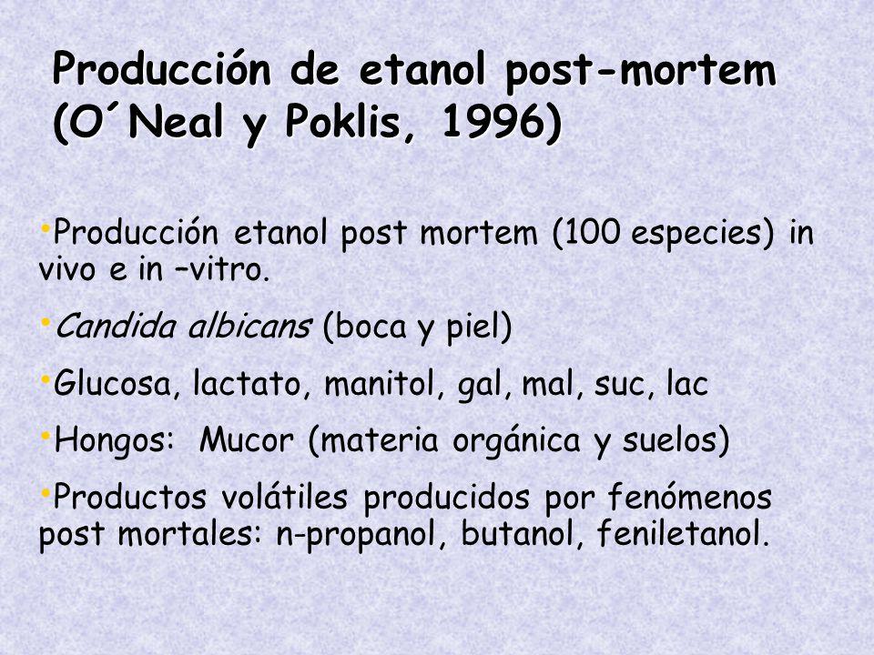 Producción de etanol post-mortem (O´Neal y Poklis, 1996) Producción etanol post mortem (100 especies) in vivo e in –vitro.