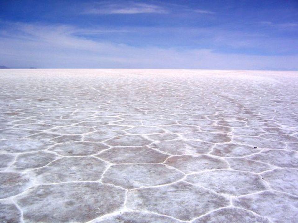 Además, este desierto constituye una de las mayores reservas de litio y cuenta con importantes cantidades de potasio, boro y magnesio. Más de 40 empre