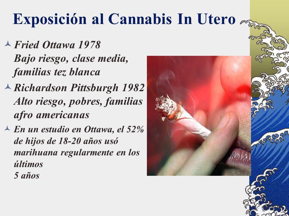 Exposición al Cannabis In Utero Fried Ottawa 1978 Bajo riesgo, clase media, familias tez blanca Richardson Pittsburgh 1982 Alto riesgo, pobres, famili