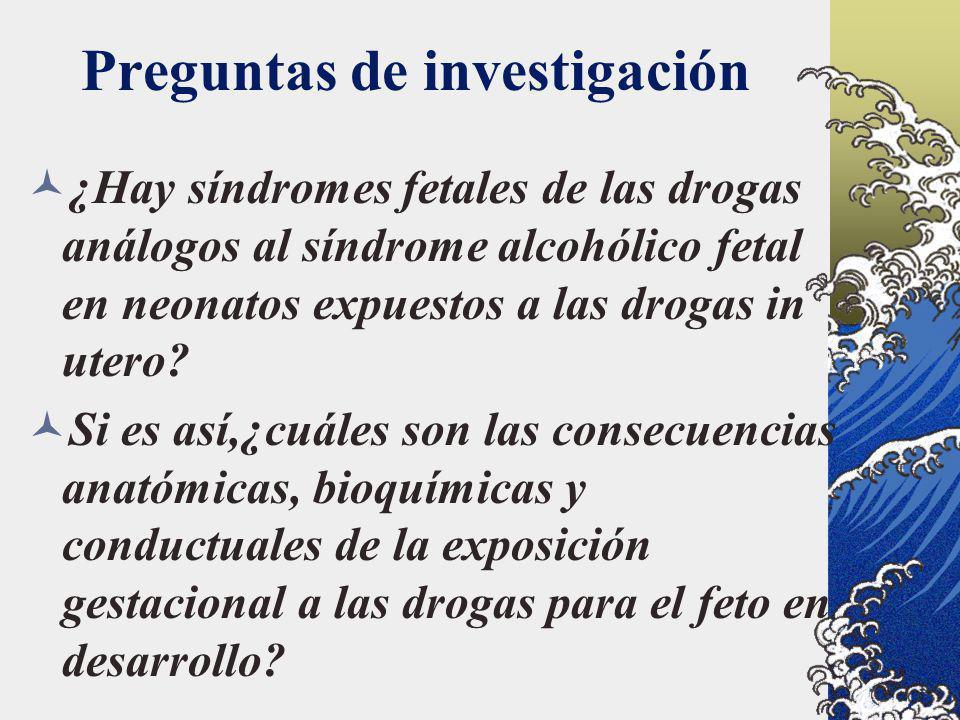 Preguntas de investigación ¿Hay síndromes fetales de las drogas análogos al síndrome alcohólico fetal en neonatos expuestos a las drogas in utero? Si