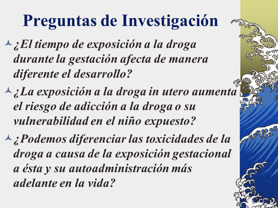 Preguntas de Investigación ¿El tiempo de exposición a la droga durante la gestación afecta de manera diferente el desarrollo? ¿La exposición a la drog