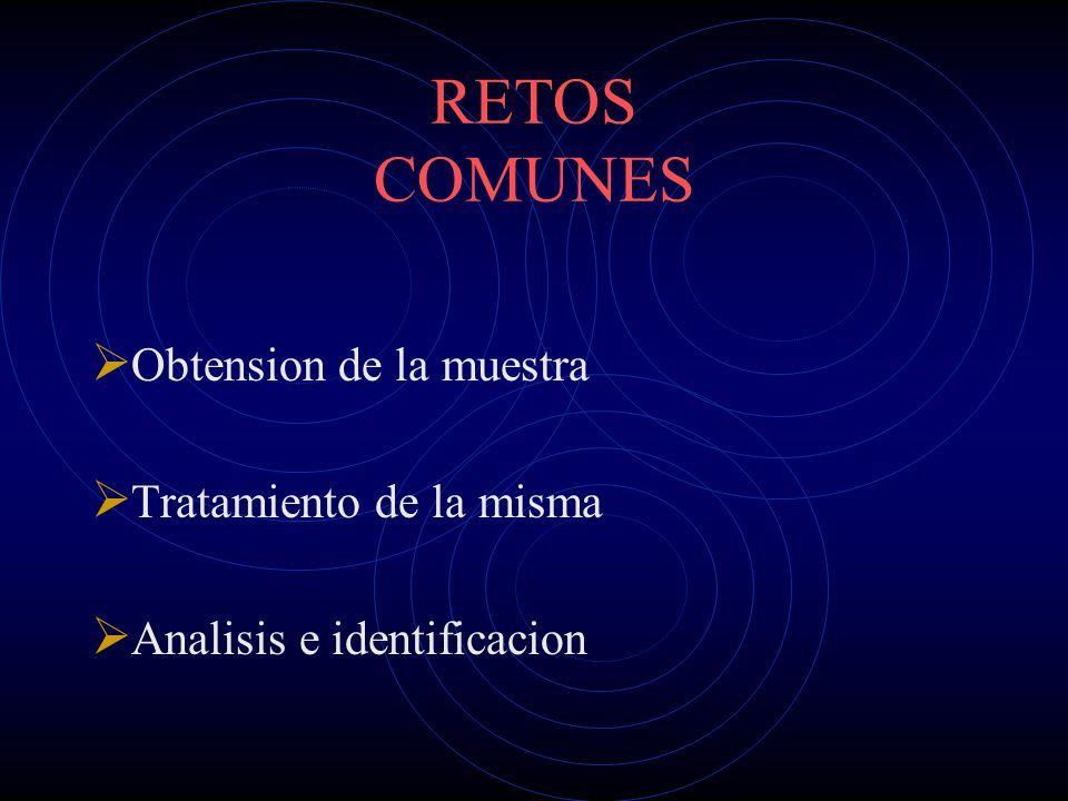 RETOS ACTUALES Analisis e identificacion de enmascaradores.