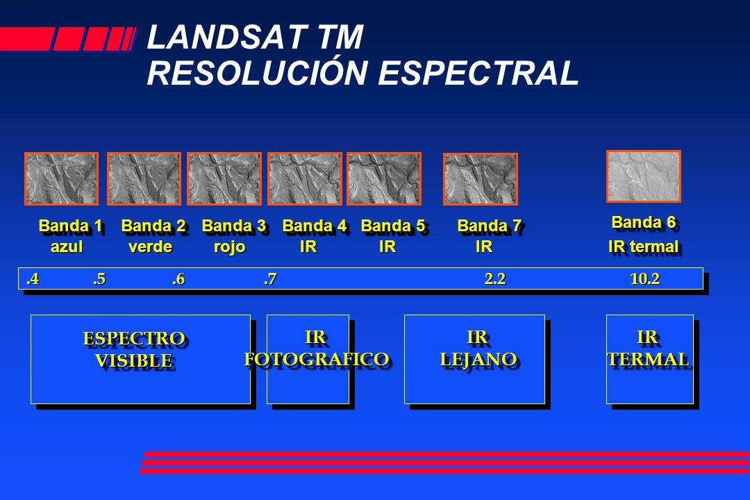 LANDSAT TM RESOLUCIÓN ESPECTRAL Banda 1 azul Banda 2 verde Banda 3 rojo Banda 4 IR Banda 5 IR Banda 7 IR Banda 6 IR termal ESPECTROVISIBLEESPECTROVISI