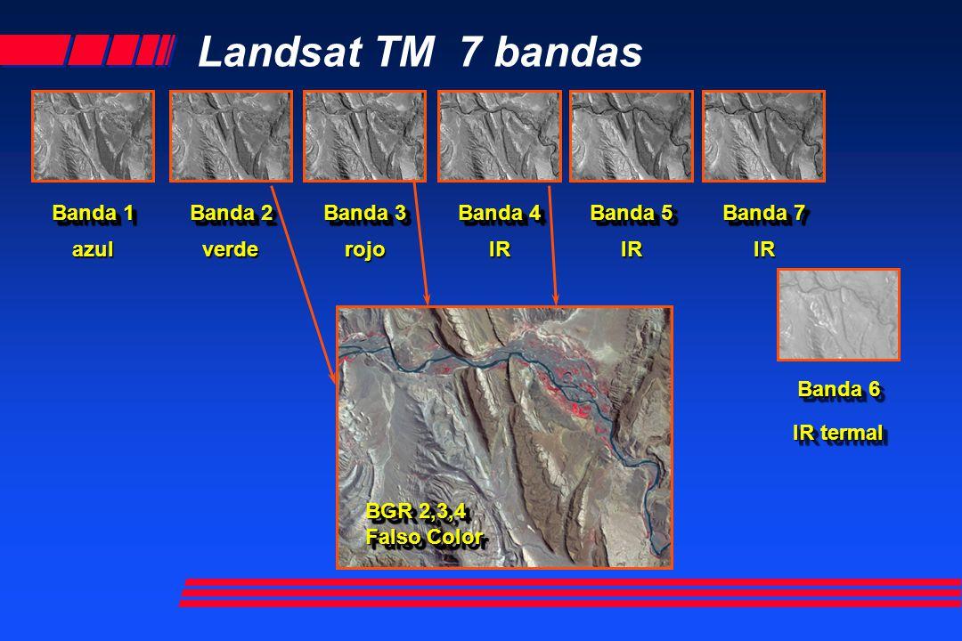 Landsat TM 7 bandas Banda 7 Banda 1 azul Banda 2 verde Banda 3 rojo Banda 4 IR Banda 5 IR Banda 6 IR IR termal BGR 2,3,4 Falso Color BGR 2,3,4 Falso C