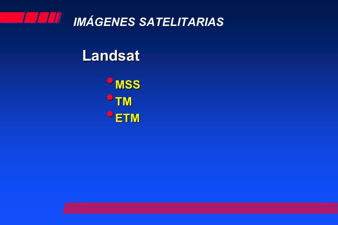 Landsat TM 7 bandas Banda 1 azul Banda 2 verde Banda 3 rojo Banda 4 IR Banda 5 IR Banda 7 IR Banda 6 IR termal BGR 2,4,7 Falso Color