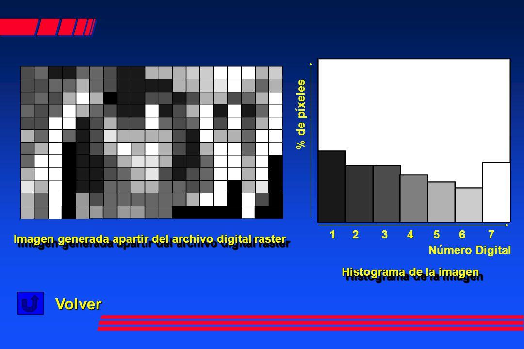 Número Digital 1 2 3 4 5 6 7 % de píxeles Imagen generada apartir del archivo digital raster Imagen generada apartir del archivo digital raster Histograma de la imagen Histograma de la imagen Volver
