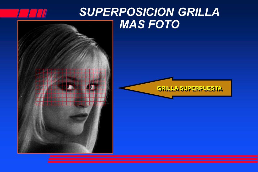 SUPERPOSICION GRILLA MAS FOTO GRILLA SUPERPUESTA