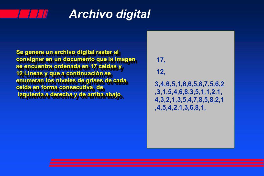 17, 12, Archivo digital Se genera un archivo digital raster al consignar en un documento que la imagen se encuentra ordenada en 17 celdas y 12 Líneas y que a continuación se enumeran los niveles de grises de cada celda en forma consecutiva de izquierda a derecha y de arriba abajo.