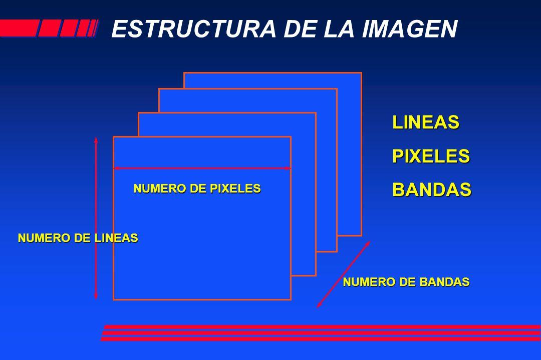 ESTRUCTURA DE LA IMAGEN NUMERO DE BANDAS NUMERO DE PIXELES NUMERO DE LINEAS LINEASPIXELESBANDAS