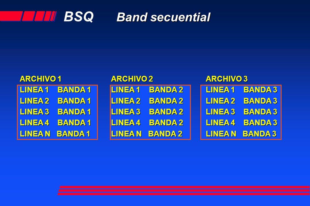 Band interlived by pixel BIP Band interlived by pixel PX 1 B 1 PX 1 B2 PX1 B3 PX B4 PX1 BN Línea 1 PX 1 B 1 PX 1 B2 PX1 B3 PX B4 PX1 BN Línea 2 PX 1 B 1 PX 1 B2 PX1 B3 PX B4 PX1 BN Línea 3 PX 1 B 1 PX 1 B2 PX1 B3 PX B4 PX1 BN Línea 4 PX 1 B 1 PX 1 B2 PX1 B3 PX B4 PX1 BN Línea 5 PX 1 B 1 PX 1 B2 PX1 B3 PX B4 PX1 BN Línea 6 PX 1 B 1 PX 1 B2 PX1 B3 PX B4 PX1 BN Línea 7 Volver
