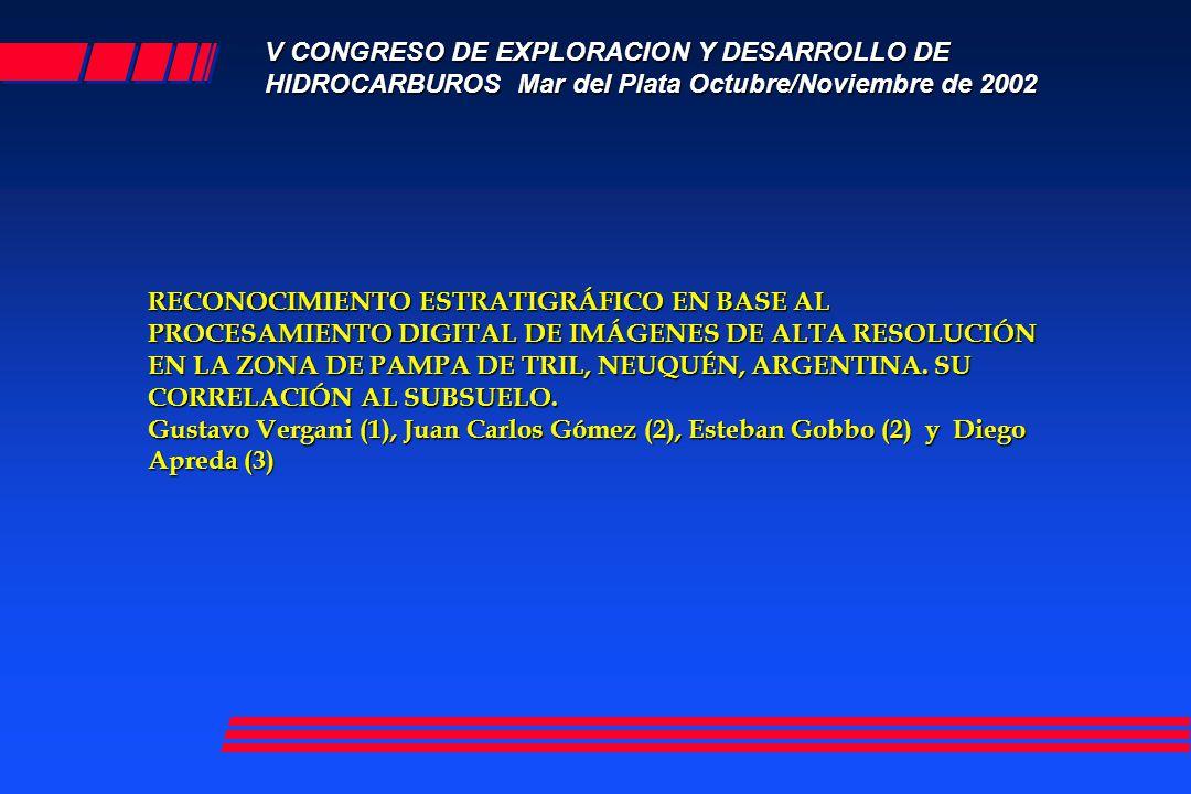 RECONOCIMIENTO ESTRATIGRÁFICO EN BASE AL PROCESAMIENTO DIGITAL DE IMÁGENES DE ALTA RESOLUCIÓN EN LA ZONA DE PAMPA DE TRIL, NEUQUÉN, ARGENTINA. SU CORR