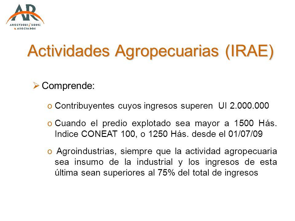 Actividades Agropecuarias (IRAE) Comprende: oContribuyentes cuyos ingresos superen UI 2.000.000 oCuando el predio explotado sea mayor a 1500 Hás. Indi