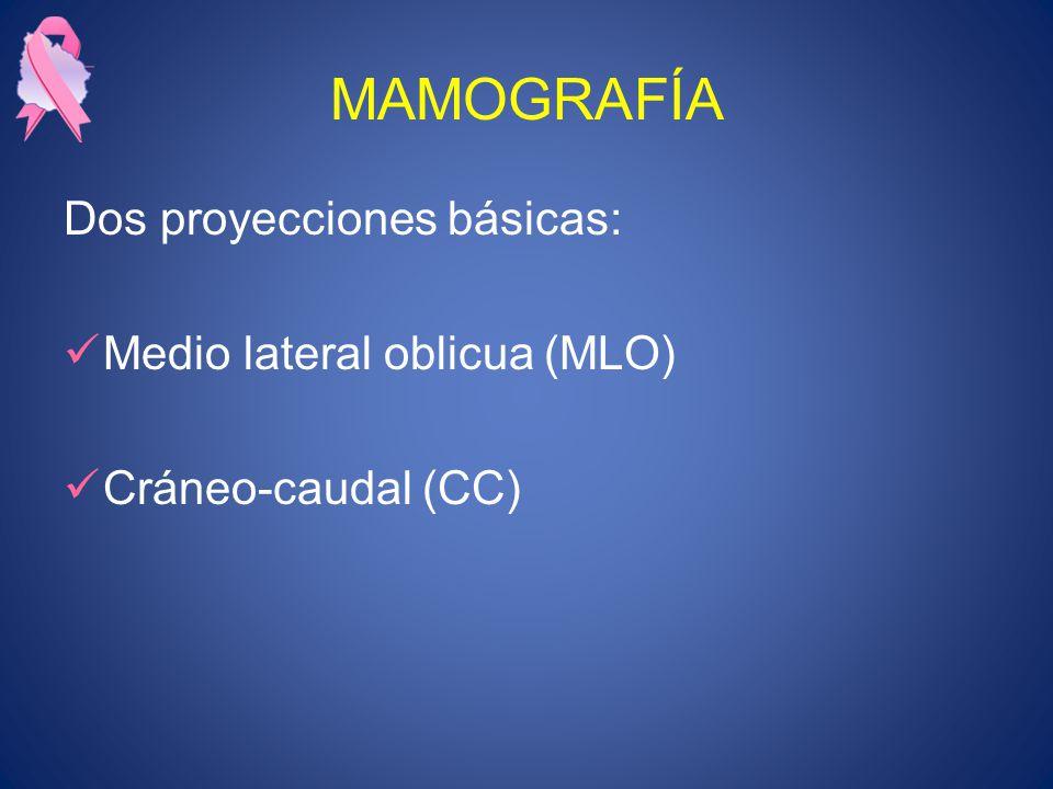 MAMOGRAFÍA Dos proyecciones básicas: Medio lateral oblicua (MLO) Cráneo-caudal (CC)