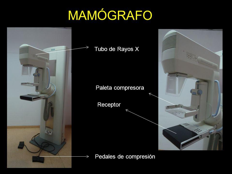 MAMÓGRAFO Tubo de Rayos X Paleta compresora Receptor Pedales de compresión