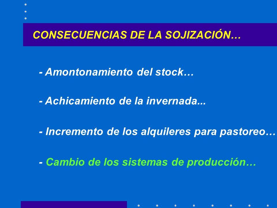 CONSECUENCIAS DE LA SOJIZACIÓN… - Amontonamiento del stock… - Achicamiento de la invernada...