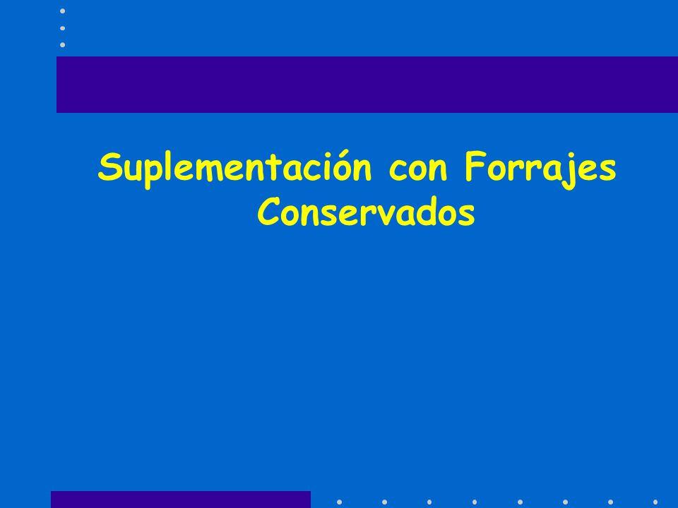 Suplementación con Forrajes Conservados