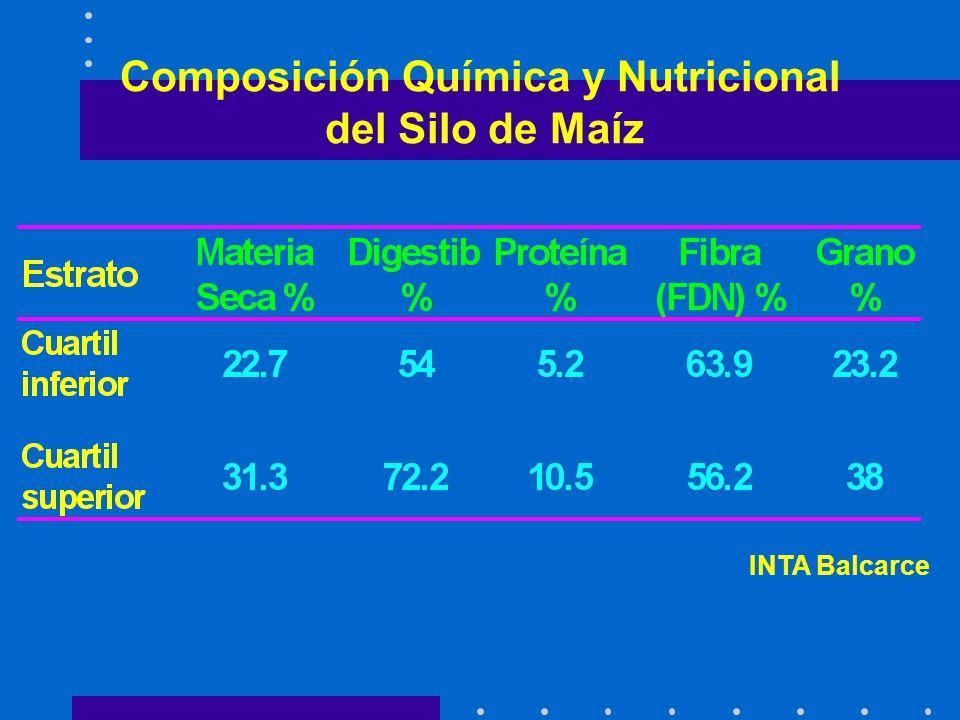 Composición Química y Nutricional del Silo de Maíz INTA Balcarce