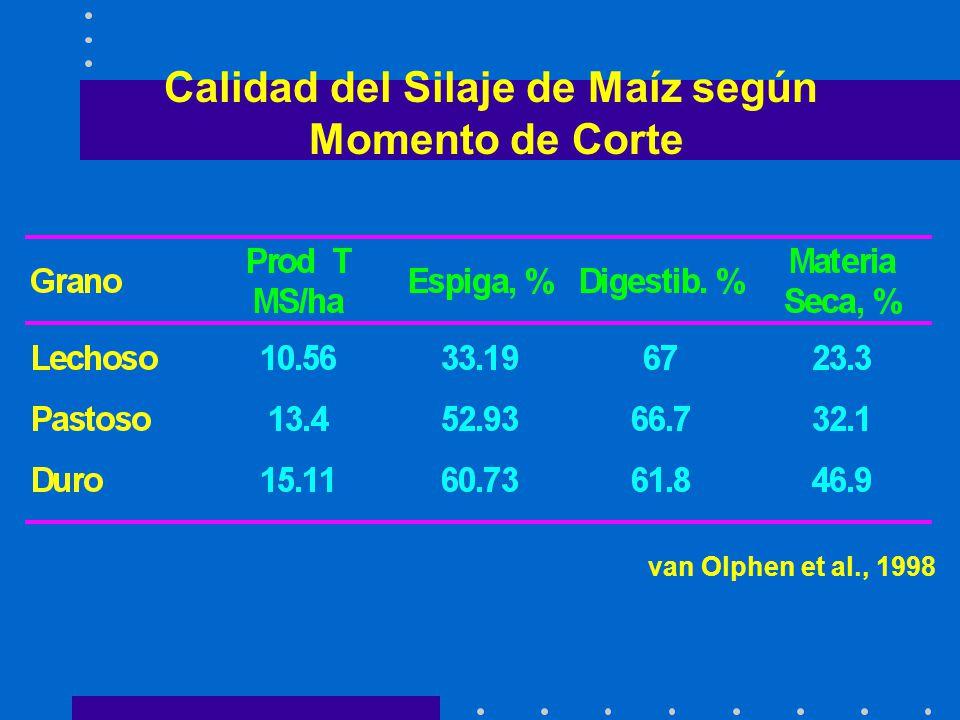 Calidad del Silaje de Maíz según Momento de Corte van Olphen et al., 1998