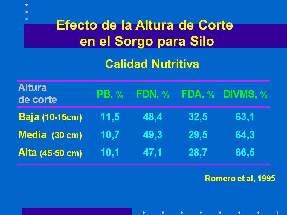 Producción y Composición de la Planta Romero et al, 1995 Efecto de la Altura de Corte en el Sorgo para Silo Romero et al, 1995 Calidad Nutritiva