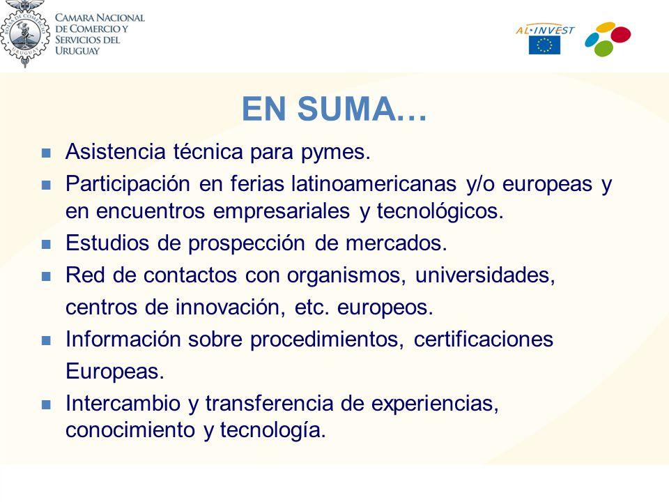 EN SUMA… Asistencia técnica para pymes.