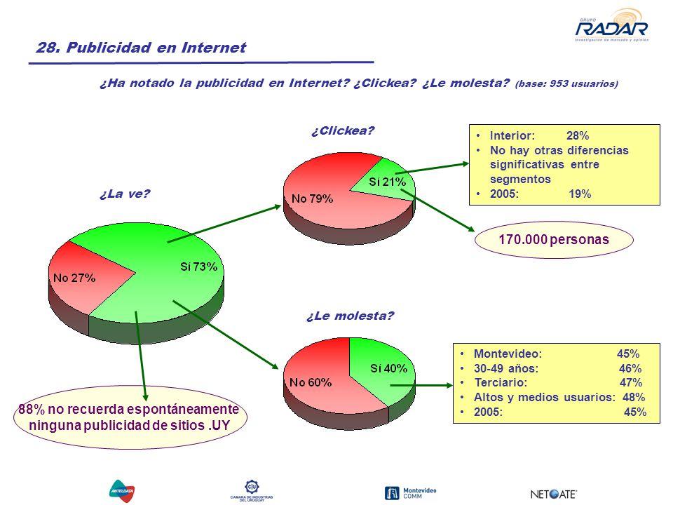 28. Publicidad en Internet ¿Ha notado la publicidad en Internet.