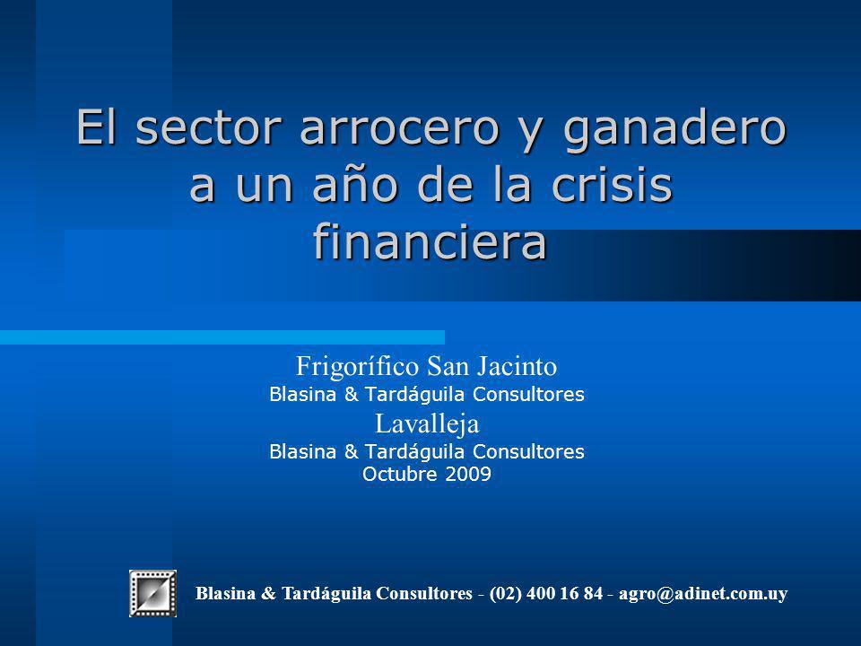 El sector arrocero y ganadero a un año de la crisis financiera Frigorífico San Jacinto Blasina & Tardáguila Consultores Lavalleja Blasina & Tardáguila Consultores Octubre 2009 Blasina & Tardáguila Consultores - (02) 400 16 84 - agro@adinet.com.uy