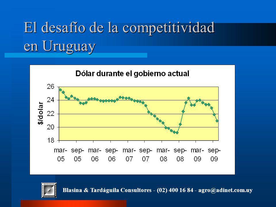 Blasina & Tardáguila Consultores - (02) 400 16 84 - agro@adinet.com.uy El desafío de la competitividad en Uruguay