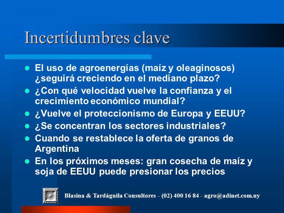 Blasina & Tardáguila Consultores - (02) 400 16 84 - agro@adinet.com.uy Incertidumbres clave El uso de agroenergías (maíz y oleaginosos) ¿seguirá creciendo en el mediano plazo.