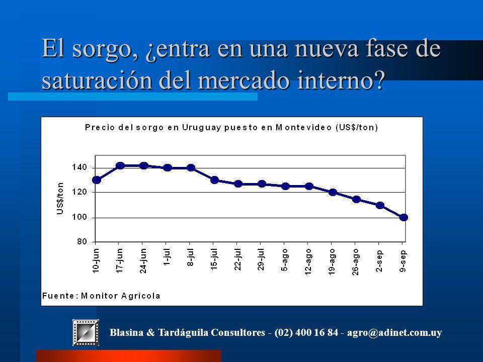 Blasina & Tardáguila Consultores - (02) 400 16 84 - agro@adinet.com.uy El sorgo, ¿entra en una nueva fase de saturación del mercado interno