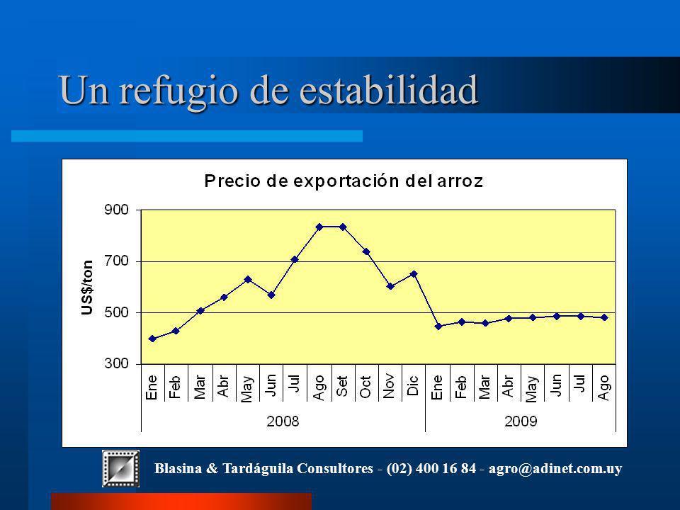 Blasina & Tardáguila Consultores - (02) 400 16 84 - agro@adinet.com.uy Un refugio de estabilidad