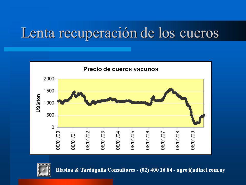 Blasina & Tardáguila Consultores - (02) 400 16 84 - agro@adinet.com.uy Lenta recuperación de los cueros