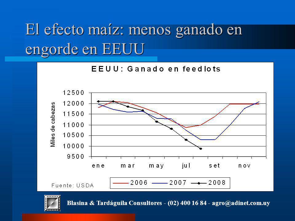 Blasina & Tardáguila Consultores - (02) 400 16 84 - agro@adinet.com.uy El efecto maíz: menos ganado en engorde en EEUU
